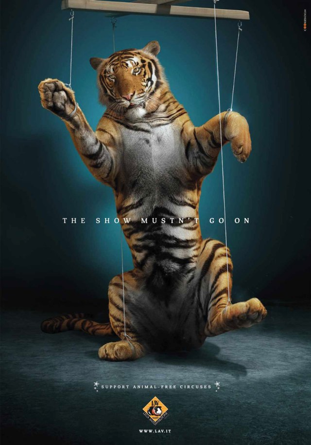public-social-ads-animals-96