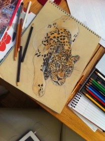 Leopard art by Kate