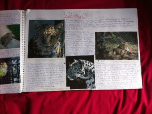 Animal research by Kate on Conservation