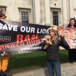 Anneka Svenska - Global march for Lions