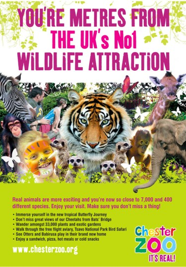 Chester-Zoo-A3-Poster