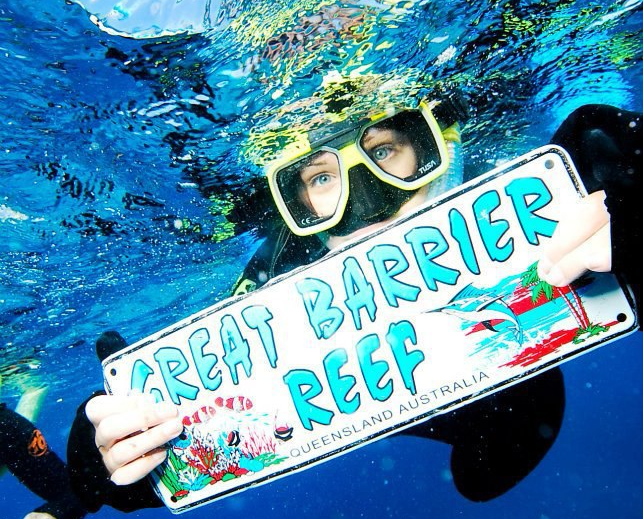 Diving the Great Barrier Reef… at the Natural History Museum