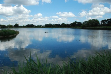 Photography Day Course — Woodburry-Wetlands