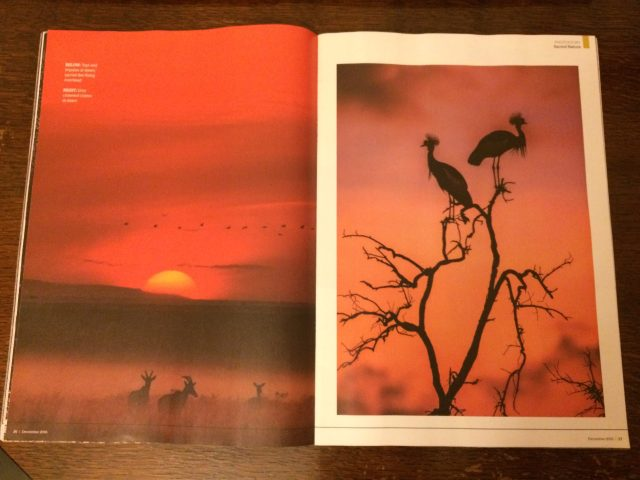 Geographical Magazine publishes images from Sacred Nature