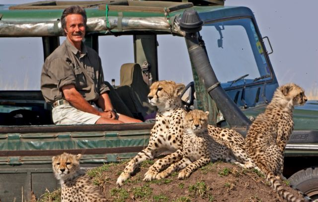 Jonathan Scott with cheetah and cubs on BBC Big Cat Week