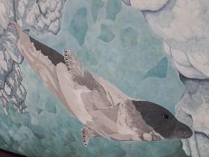 harp seal by Omra Sian