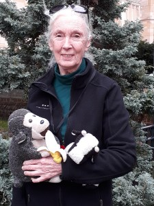 Jane Goodall and Mr H chimpanzee roots and shoots