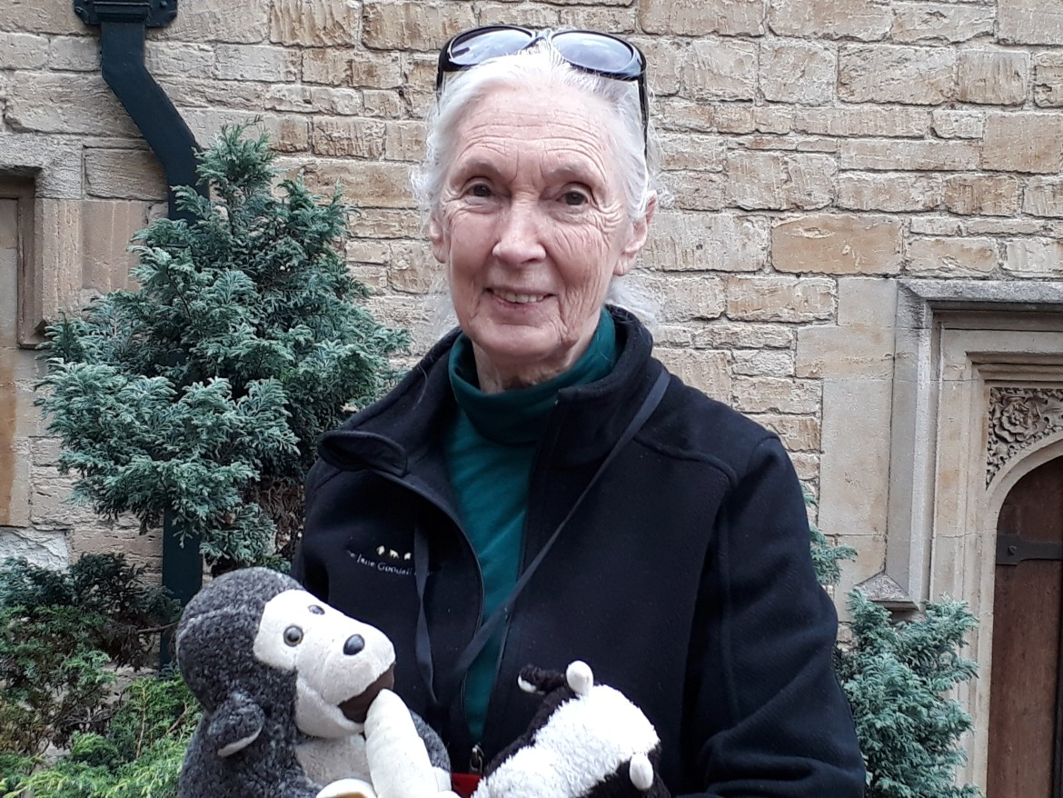Jane Goodall – Special interview: Roots & Shoots