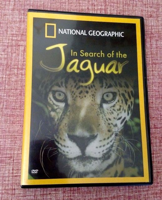 In search of the jaguar - jaguar journey
