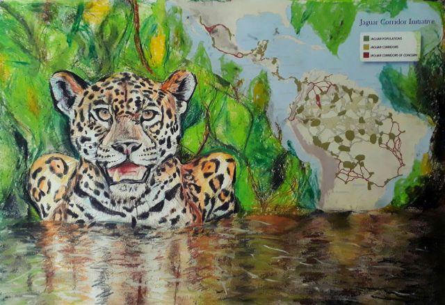 kate on conservation jaguar sketch