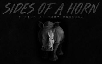 Sides Of A Horn film art