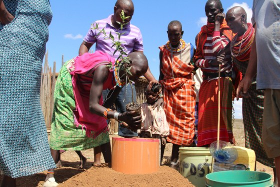 Tree-planting community projects