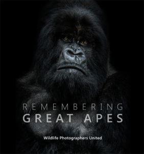 Remembering Great Apes - cover photo by Nelis Wolmarans