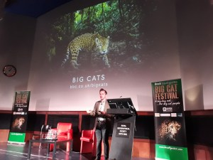 Gavin Boyland talks about BBC Big Cats series at Brad'ts big cat festival