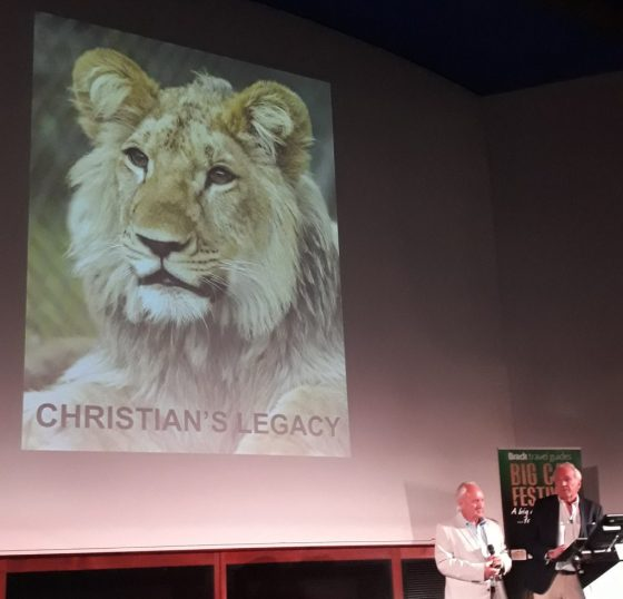 John Rendall Christian the lion's legacy at Big Cat Festival