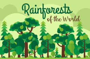 rainforests of the world infographic title card
