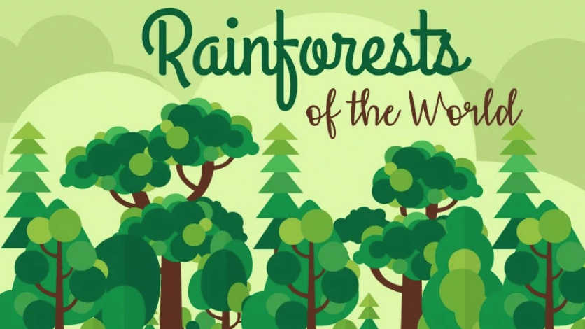 Rainforests of the World: Guest post and infographic