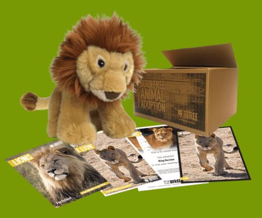 King adoption pack