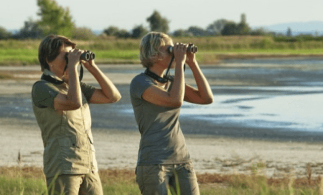 binoculars on safari - 10 things for wildlife adventurers