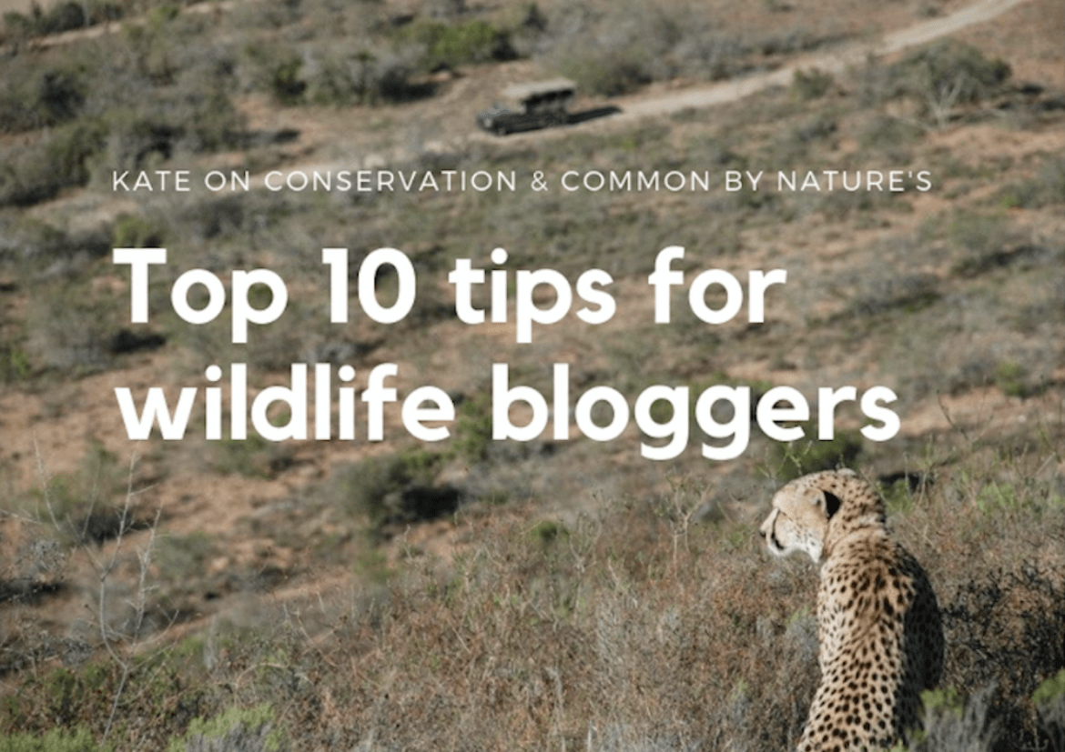 kate-on-conservation-and-common-by-nature-top-10-tips-for-wildlife-lovers