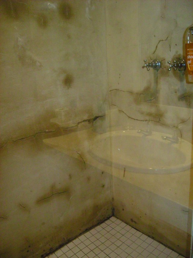 Madolas lodge mouldy shower