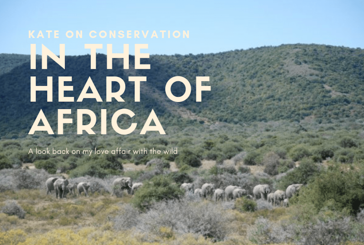 In the heart of Africa: Introducing a new project