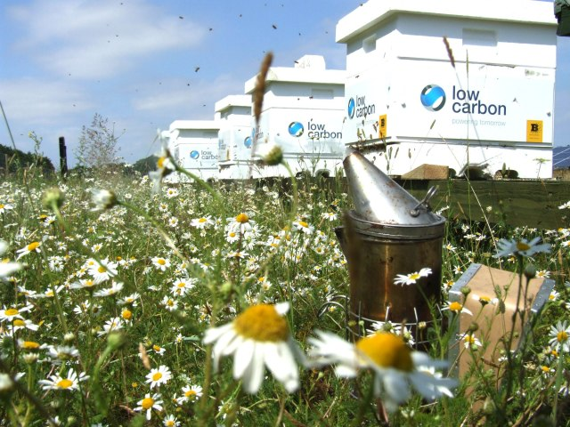 Low Carbon beehives