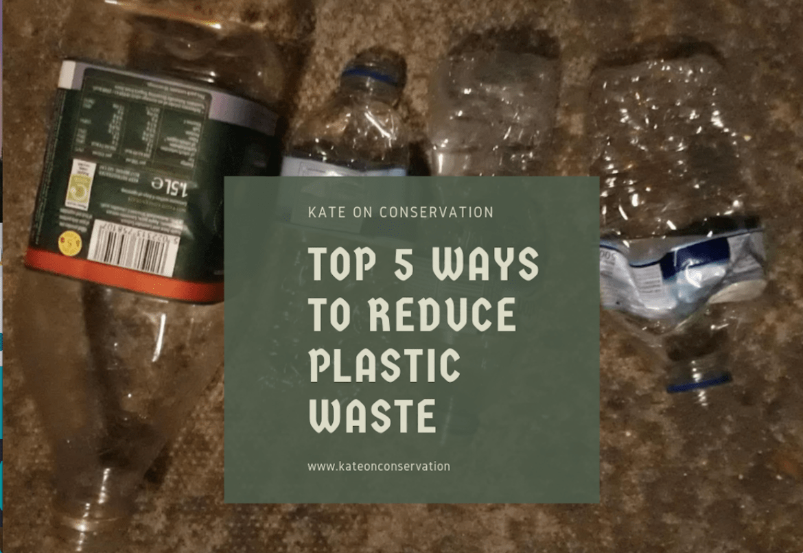 Top 5 ways to reduce plastic waste!