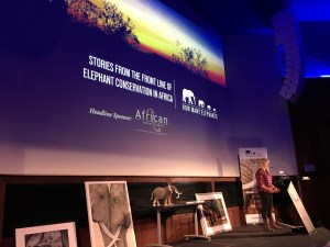 Holly Budge opens How Many Elephants event