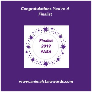 animal star awards finalist