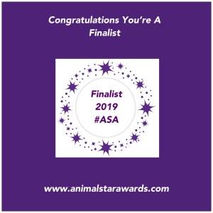 animal star awards finalist