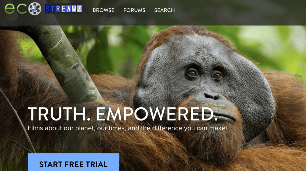 ECOSTREAMZ: The first documentary service for the global activist community