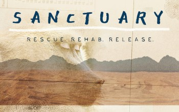 Sanctuary-film-poster