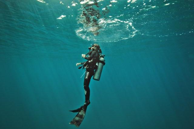 Marine-biologist-Ilena-Zanella-under-the-sea-in-diving-gear