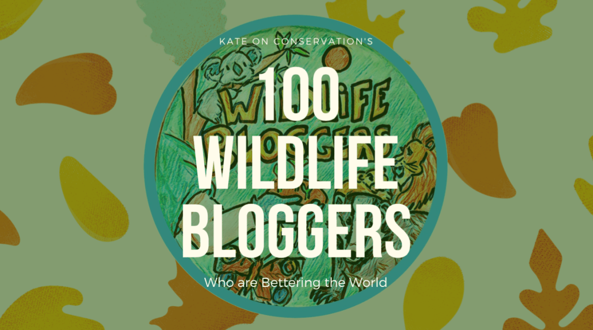 100 Wildlife Bloggers Who are Bettering the World