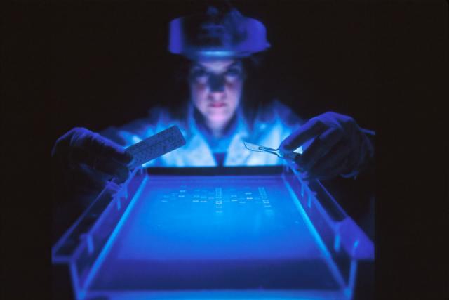 dna-sequence-testing-biobank-unsplash