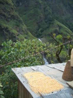 Nepal 2008 177