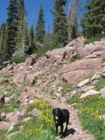 Uintas Rock Creek Basin Sept 2011 011
