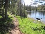 Uintas Rock Creek Basin Sept 2011 064