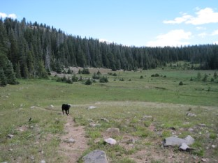 Uintas Rock Creek Basin Sept 2011 067