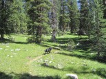 Uintas Rock Creek Basin Sept 2011 069