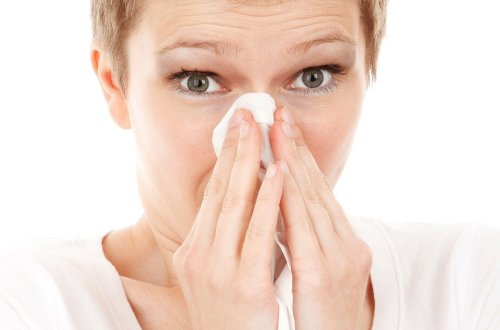 How To Decrease Allergens