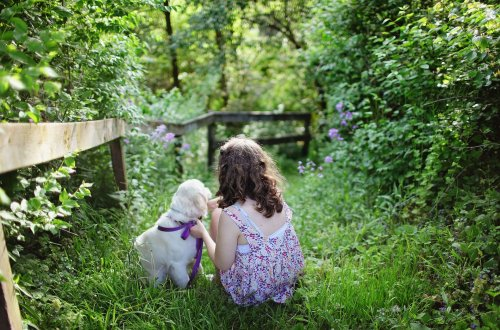 Keeping Children Safe With Dogs