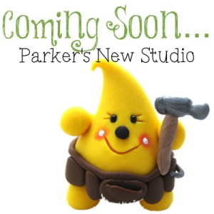 Coming Soon - Parker's New Studio at Kater's Acres