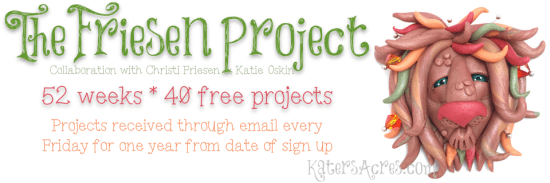 The Friesen Project Slider