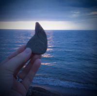 Parker shaped rock found at Lake Erie's Walnut Beach