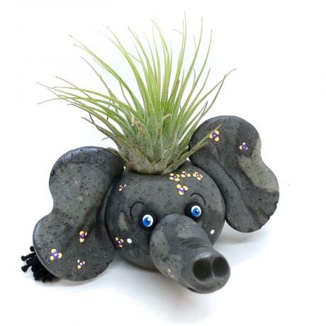 Elephant Air Plant Holder by KatersAcres