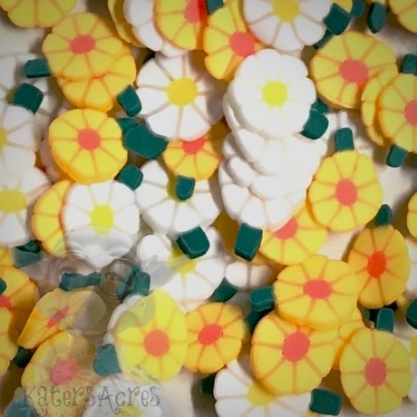 Millefiori Daisy Flower Cane Slices from Kater's Acres