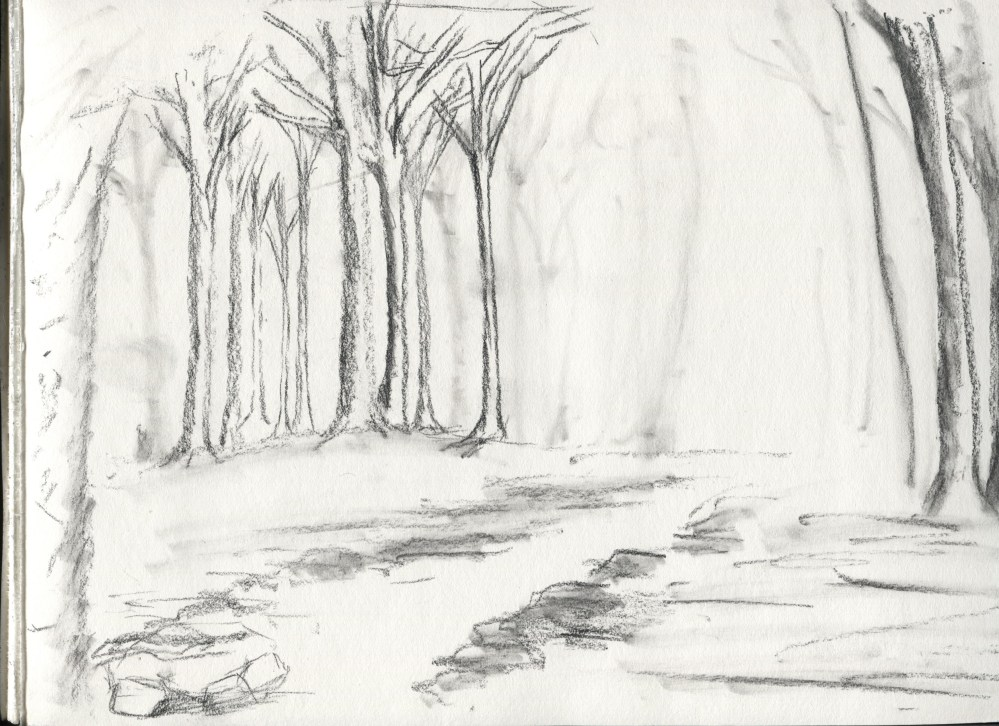 Evening Mist Forest Sketch