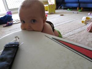 Nom nom nom, surfboards taste good!
